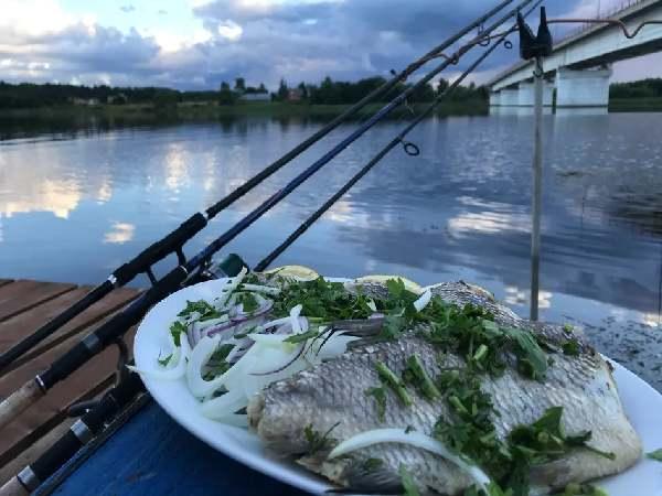 Рыбалка в кемпинге